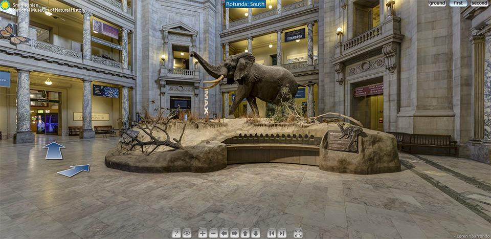 Museos realidad virtual, Museo Historia Natural