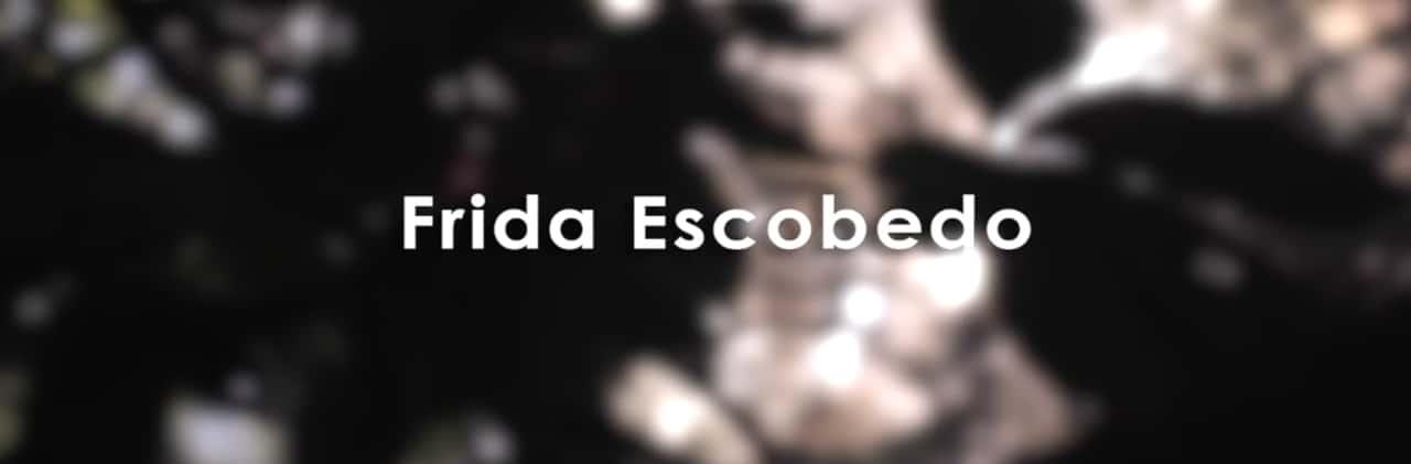 Portadilla video Frida Escobedo