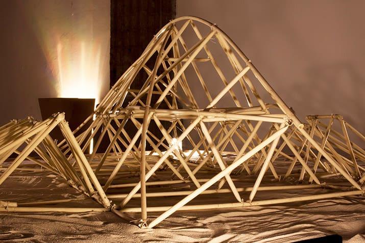 theo jansen asombrosas criaturas laboratorio arte alameda strandbeest, int1