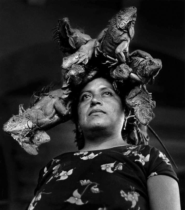 biografía graciela iturbide fotógrafa mexicana ganadora del premio hasselblad