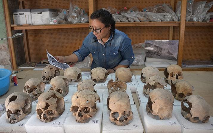 tzompantli centro histórico ciudad de méxico excavaciones guatemala, inah 4