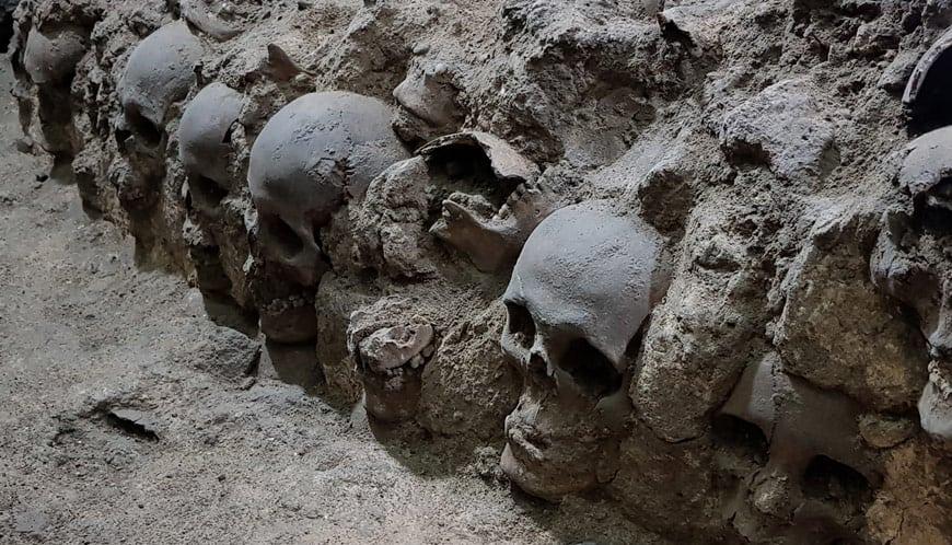 tzompantli centro histórico ciudad de méxico excavaciones guatemala, sofia 1
