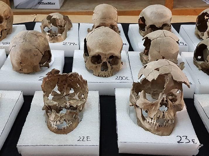 tzompantli centro histórico ciudad de méxico excavaciones guatemala, sofia 5
