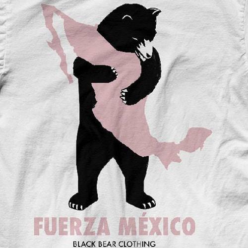 diseño mexicano sismo, int6