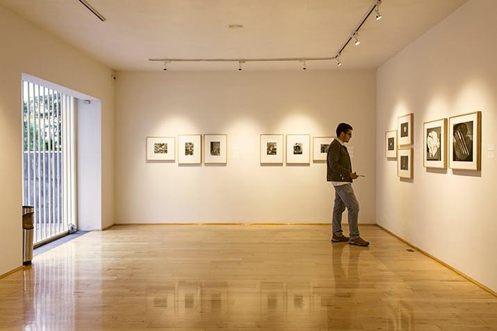 galería López Quiroga Polanco, int2