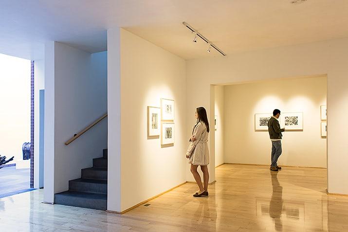 galería López Quiroga Polanco, int3