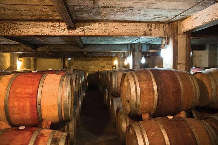 vino mexicano valle de guadalupe, la escuelita 2