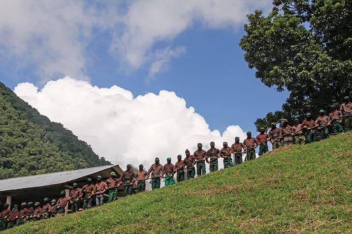 Marichuy movimientos indígenas mexicanos, int3