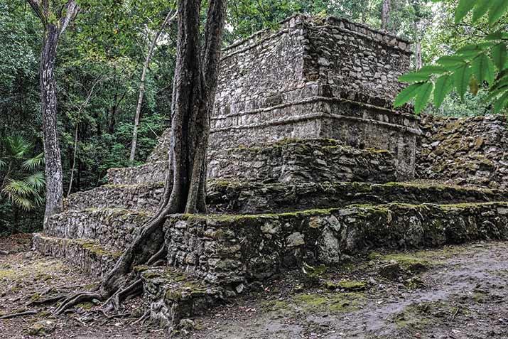 el gran acuífero maya, Muyil