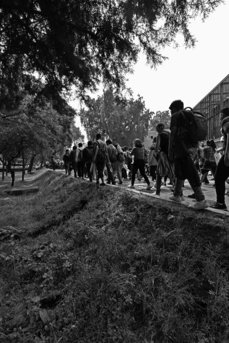 UNAM sin violencia, int5