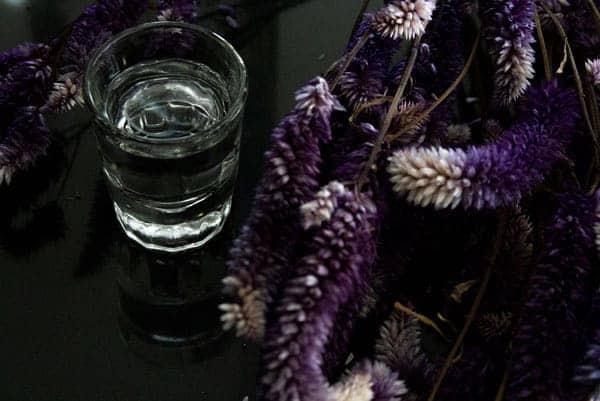 Edición especial de Tequila Tradiciona, int2