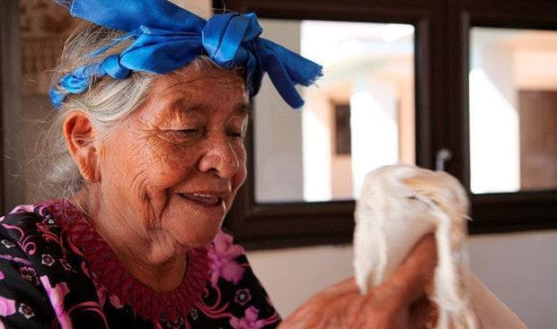 taller artesanos de Oaxaca