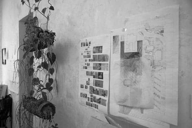 Ambrosi-Etchegaray estudio