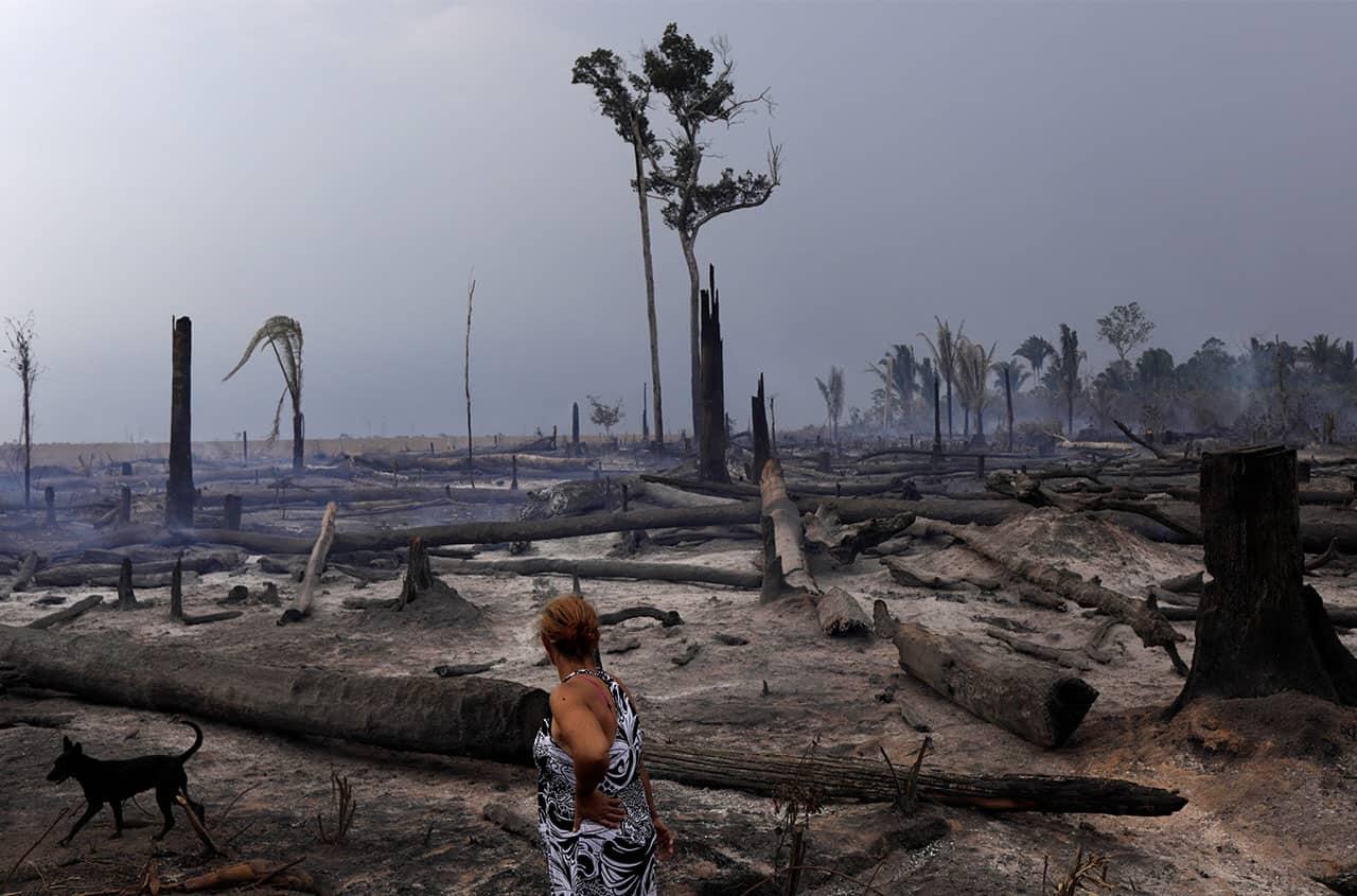 cambio climático en cuarentena amazonas