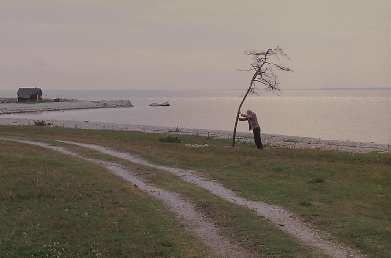 The Sacrifice (1986), Andrei Tarkovsky.