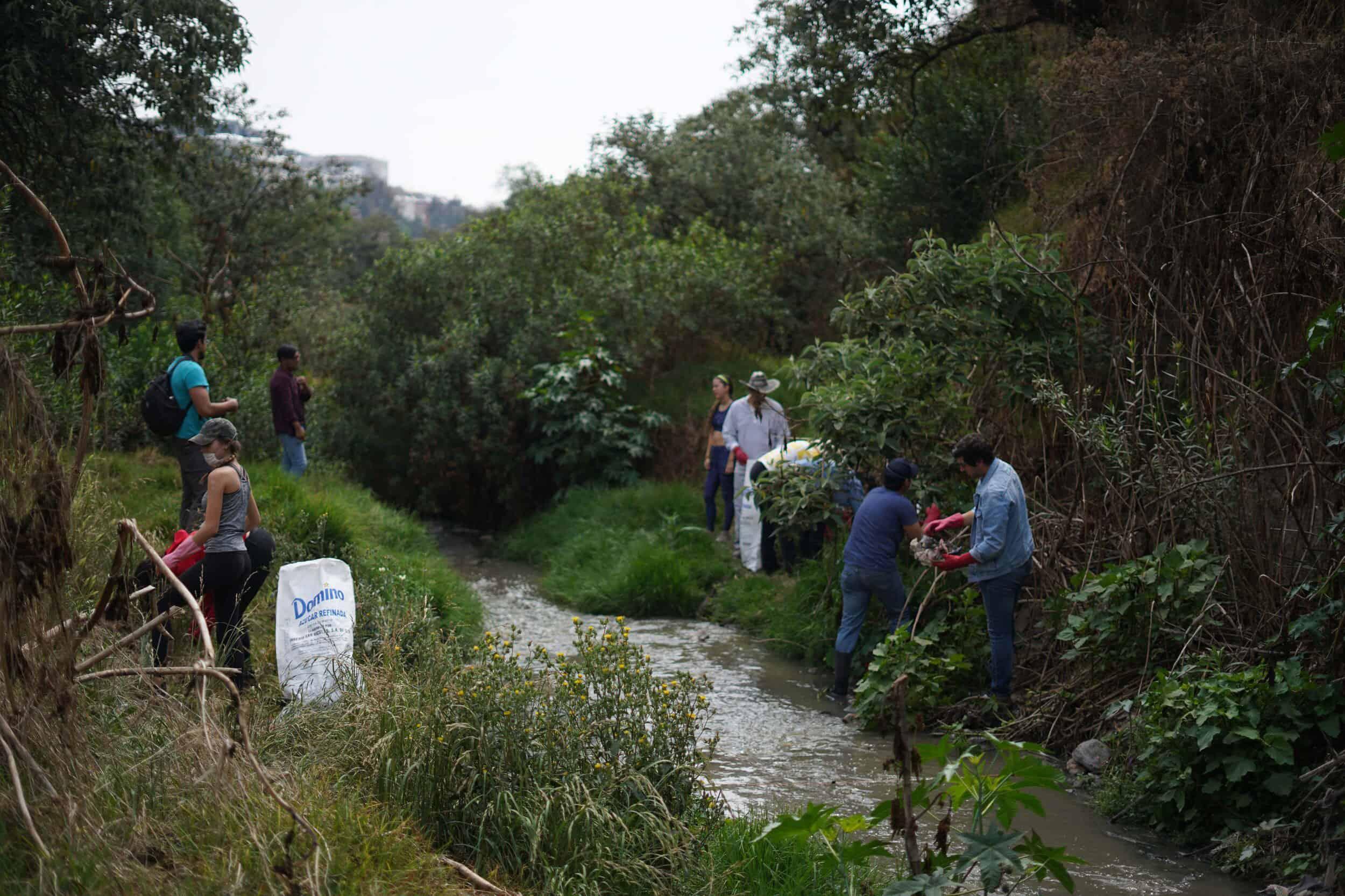 proyectos sustentables en México