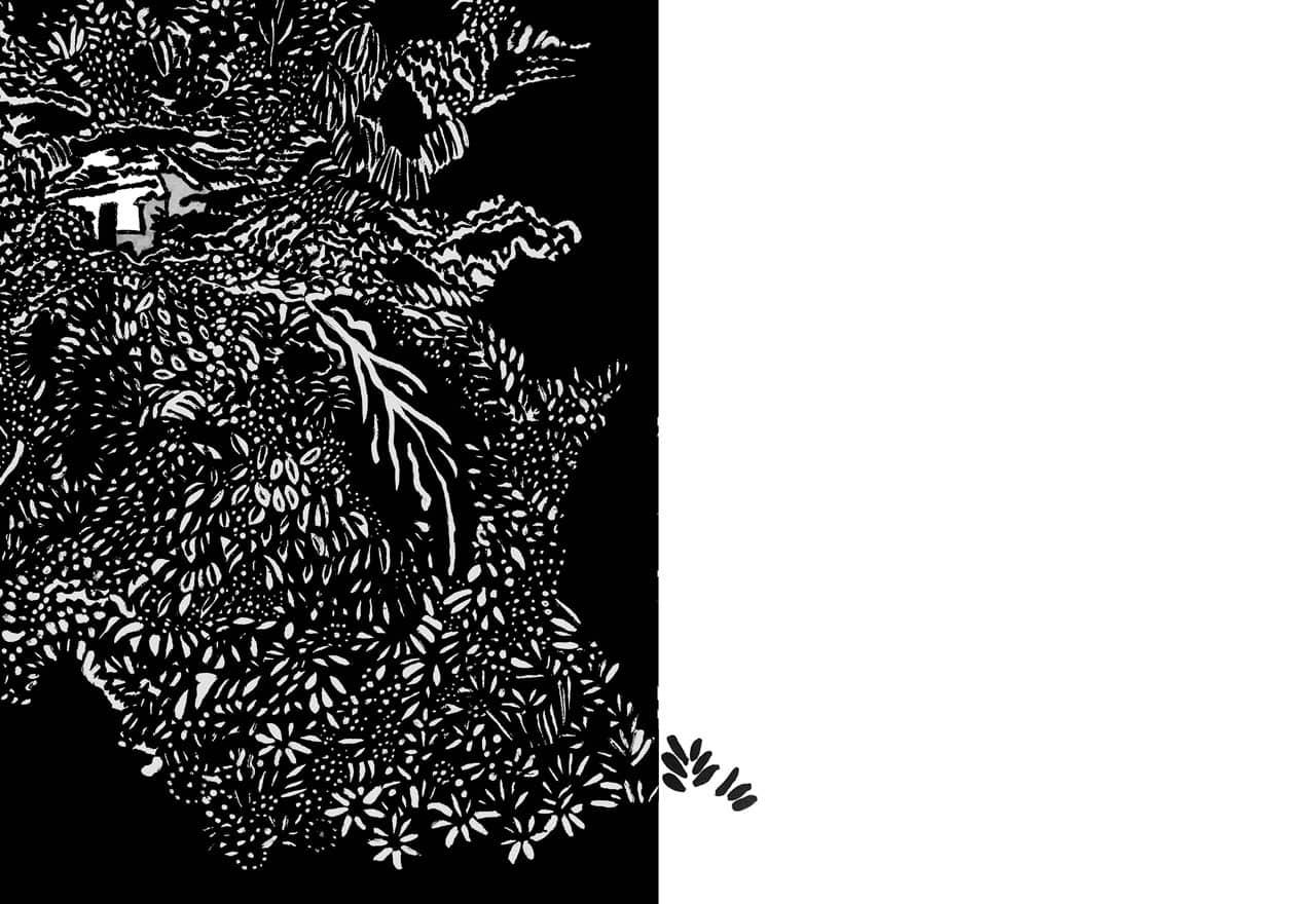 la-mata-masacre del-salado-libro maria isabel rueda