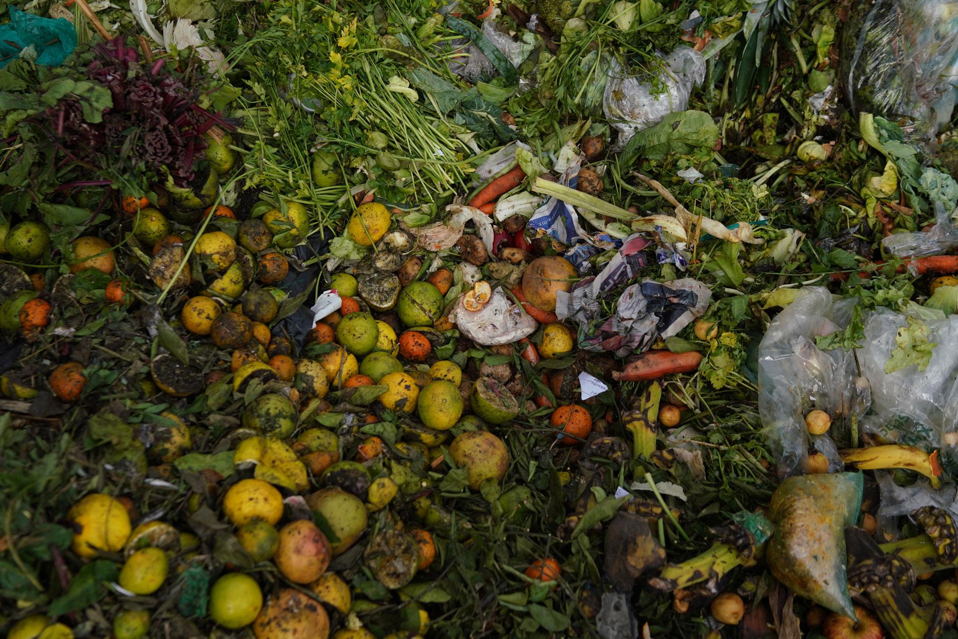 central-de-abastos-el-agujero-negro-de-los-desperdicio-de-alimentos-en-ciudad-de-mexico 2