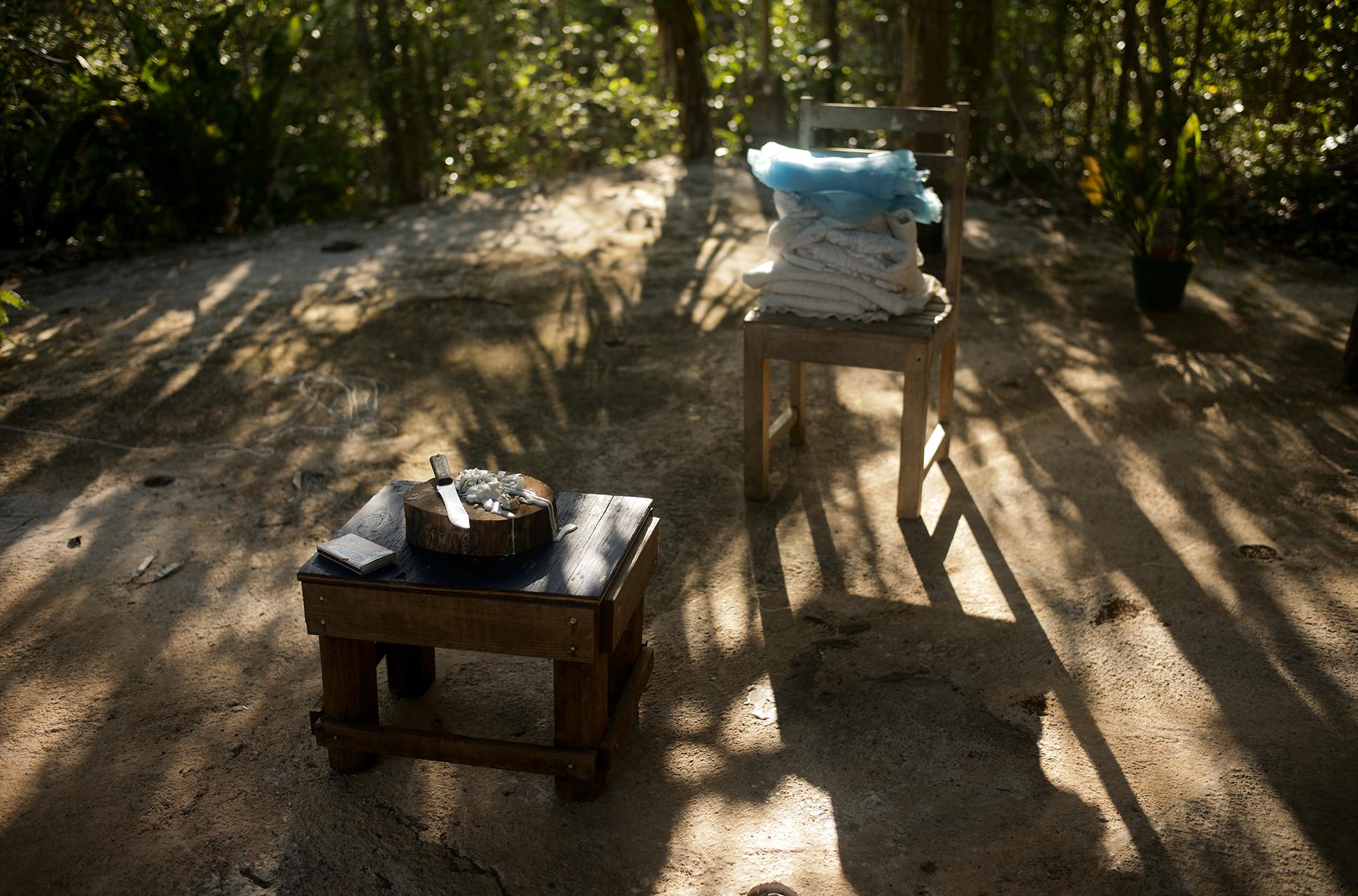 La_selva_maya_en_riesgo_El_tren_que_atravesará_la_península_de_Yucatán_Fotografía_Juan_Pablo_Ampudia_08
