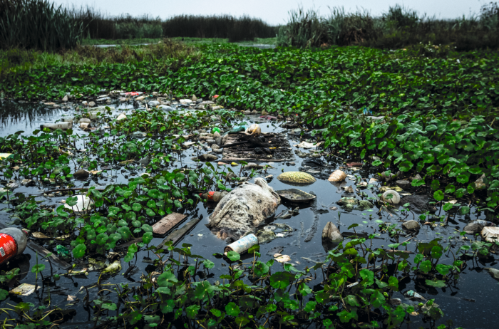 En algunos puntos la contaminación es muy visible. Es fácil encontrar botellas de plástico, llantas y animales muertos.