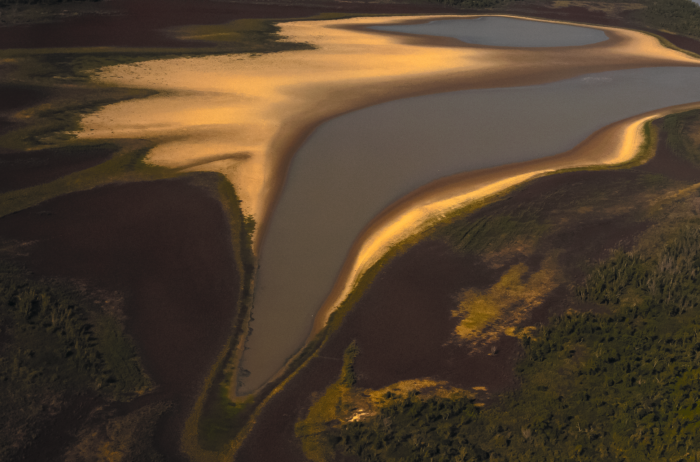 En el delta del Paraná, que se extiende a lo largo de miles de kilómetros, se conforma uno de los ecosistemas cruciales de América Latina.