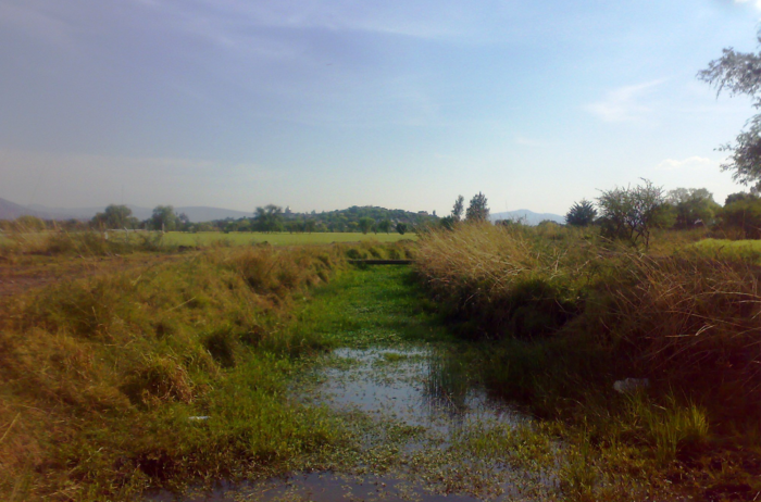 La campaña para recolectar cascarones de huevo y salvar al río Lerma de la contaminación, convocada por H2O, tiene sus limitaciones.