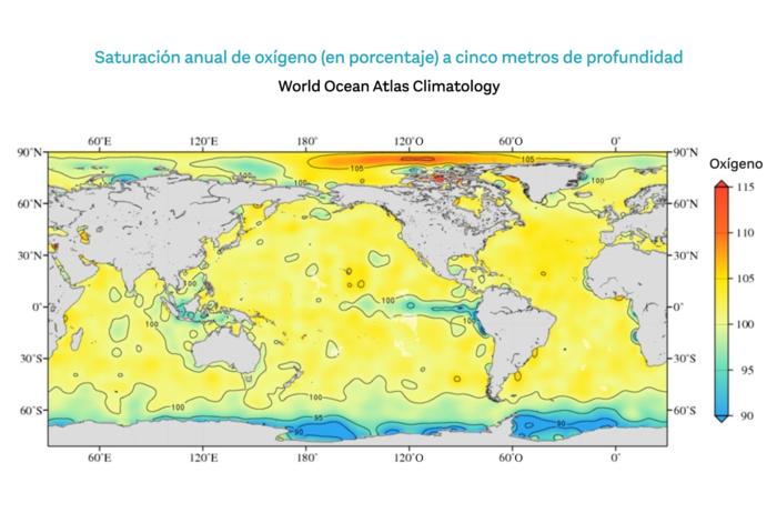 Las zonas muertas de los océanos se extienden. La más grave, en el Golfo de México, ya implicó la extinción de especies por el bajo oxígeno.