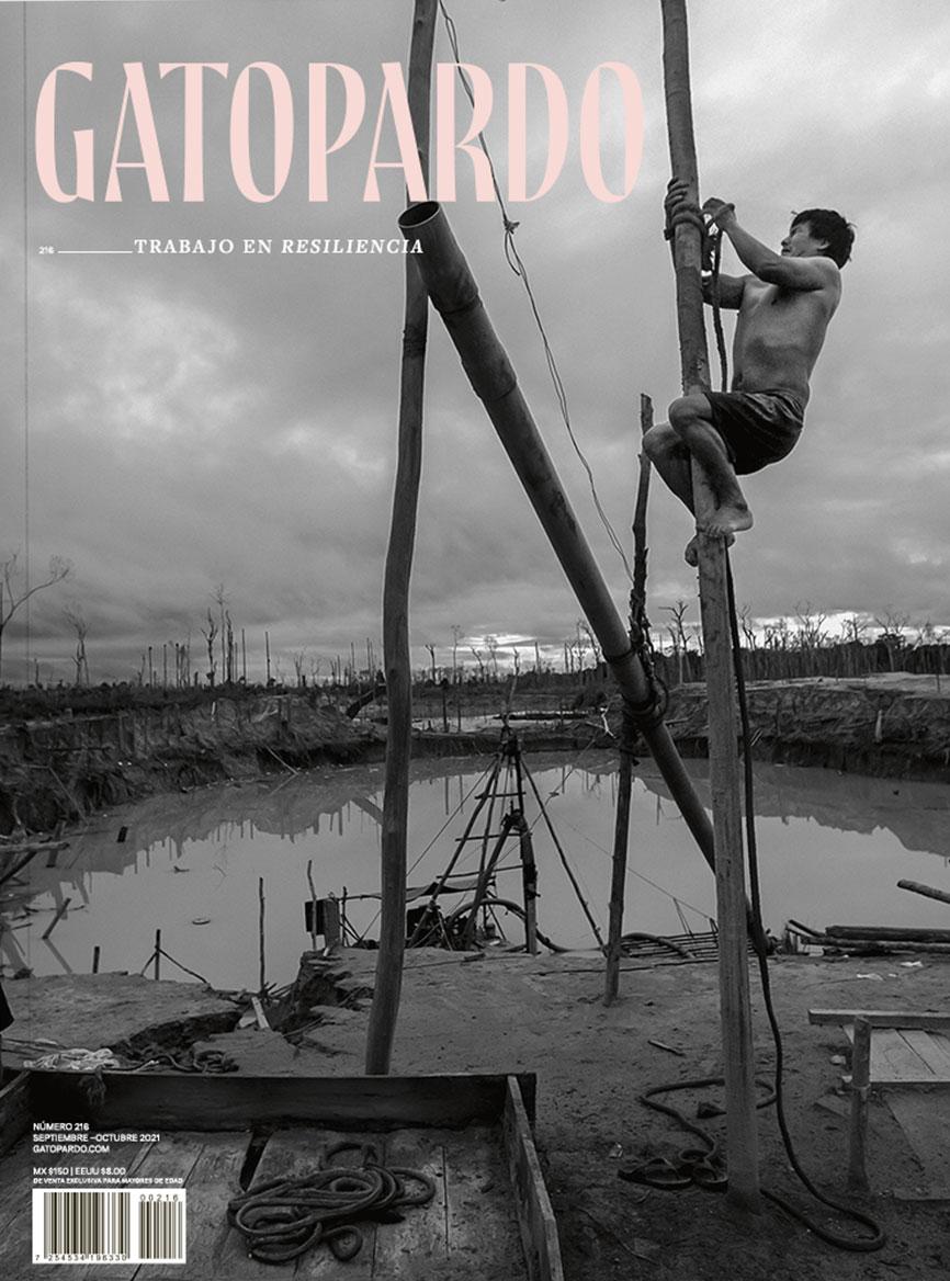 gatopardo 216 trabajo en resiliencia septiembre octubre